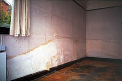 Example of Rising damp